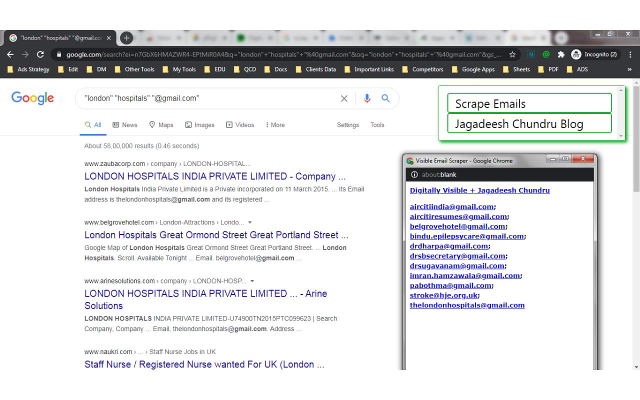 Visible Email Scraper Screenshot 1