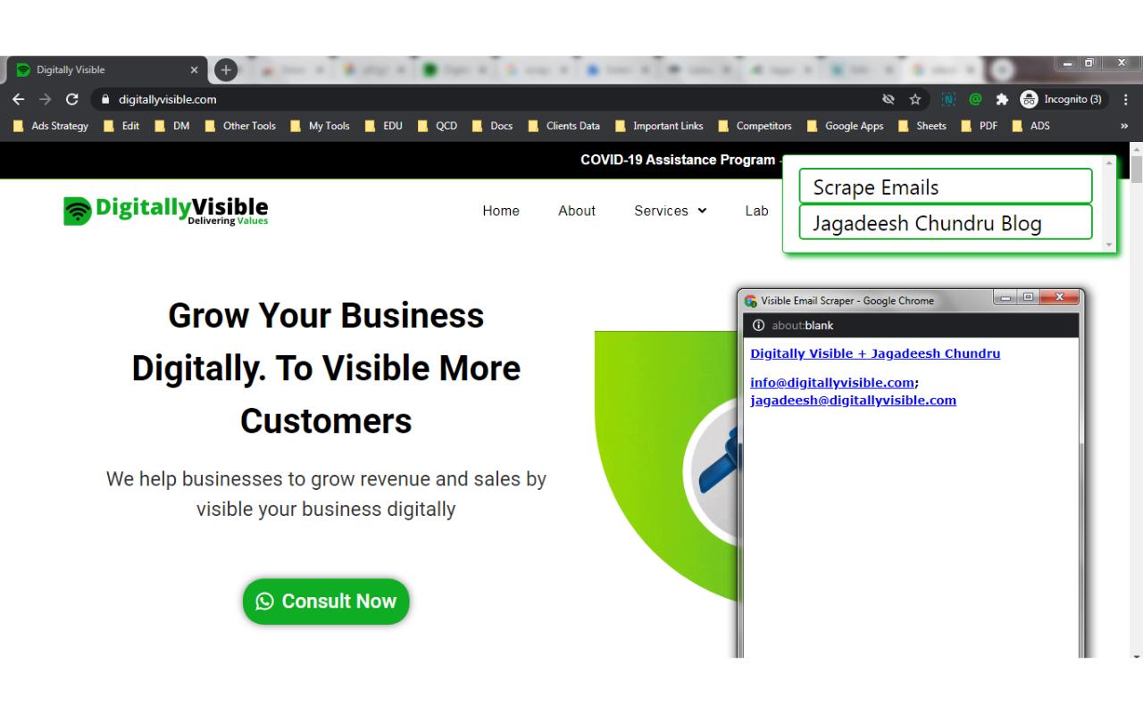 Visible Email Scraper Screenshot 4